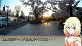 【ONE車載】ご近所ツーリング ~高田公園