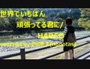 世界でいちばん頑張ってる君に/HARCO『ののたす(nonotas)/歌ってみた』