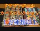 【全部で1万種類以上所有】ドラゴンボールカードの歴史を感じられる動画