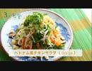 【3人食堂】ベトナム風チキンサラダ【シークリゾットトイキ】三品目