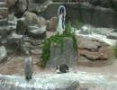 コラボ終了後のグレープ君とフルル 9月5日【東武動物公園】