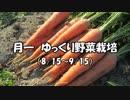 月一 ゆっくり野菜栽培 Part1