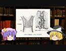 【子宮頸管】ゆっくり魔理沙と学ぶ夜の生物学5【ゆっくり解説】