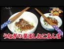【おとなのねこまんま555】Part103_うなぎの菜めしまんま