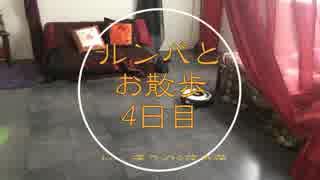 【蓮スタ】ルンバと散歩④【藤森蓮】中華&和風スタジオの掃除と少し紹介