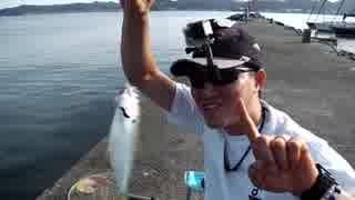 クルマで釣りに行こう♪ part 69 【ダンゴ釣り】