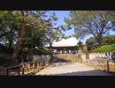 護国寺をお散歩する。