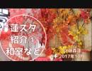 【蓮スタ】ありのままの蓮スタ撮ってみた①【藤森蓮】