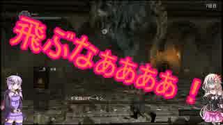 【ダークソウル】拳と呪術と時々アイテム