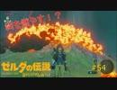 【ゼルダの伝説BW】祠に入るため燃やします#54【ボソボソプレイ 】