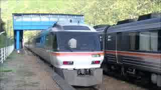 【のら】高山本線を走行するキハ85 その01