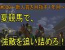 #009 Nintendo Switch Champion Jockey Special 実況プレイ ~新人賞を目指す編3~