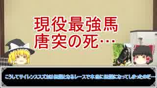 ゆっくり日本競馬史part15【夢の終わり編】