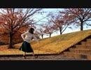 【1日遅れのぺん誕】僕らの街に愛が降る夜だ 踊ってみた【ひかり.】