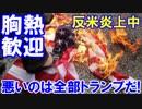 【韓国で盛大な反米炎上デモ】 こっち来んなの大合唱!