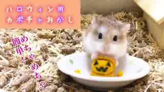 【ハム動画】超簡単!!ハロウィン用 ハム