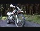 【XTZ125】バイク壊れたから直してみる【part1】