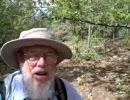 アリゾナの老人、Ergo Proxy を語る