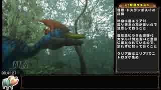 MonsterHunterG(Wii版)RTA_2時間53分13秒_