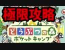 【実況】どうぶつの森 ポケットキャンプ