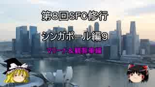 【ゆっくり】2017年 ANA SFC修行記 シン