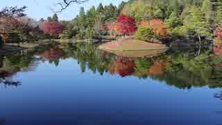 京都の紅葉(2017/11/27~28)