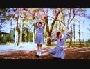 【紅葉で】イドラのサーカス踊ってみた【こまさん+おりまる】