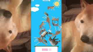 迫鳥どうぶつ部 タワーの裏技.5zoushuusei