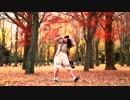 【丸井かお】恋愛デコレート 踊ってみた 【秋色】