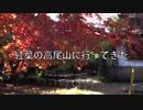 【フルHDテスト】紅葉の高尾山