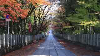 紅葉の京都(2017/12/10)