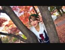 【冬紀】オツキミリサイタル【踊ってみた】