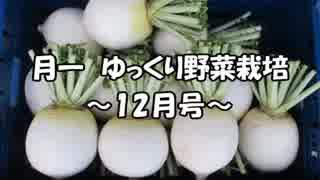 月一 ゆっくり野菜栽培 Part4
