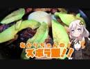 あかりちゃんのズボラ飯! 【アボカドベーコン丼】