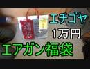 エチゴヤ1万円エアガン福袋 ~ゆっくり実