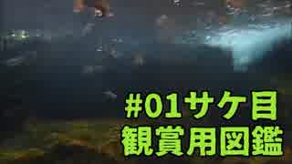 #01観賞用図鑑シリーズ