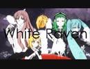 【ヒドロキノン】White Raven【初投稿?】