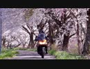 V-Strom650: Touring memories 2017
