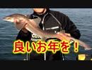 オフ会で釣った「サメ」でさつま揚げ!あとダチョウ!