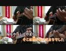 【ニコカラ】 春雷 Acoustic Arrange.Ver (メロver.) 【ビッ栗】