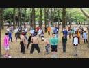 【全壊】十周年にやらないかを踊るオフin2017【注意】