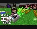 ゆっくり工魔クラフトS5 Part30【minecraft1.10.2】0146