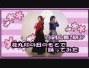 【花丸2期OP】花丸印の日のもとで踊ってみた【刀剣乱舞】#バリ缶