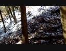 (ゆかマキ解説)変態忍者の、狩猟&有害鳥獣駆除従事活動記・その19
