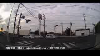 一般ドライバーを脅かす危険運転帯有者