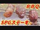 【ステーキ串焼き】100円SPG編③【BBQ修造】36-③