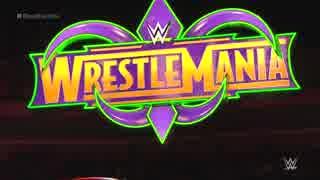 【WWE】男子30人ロイヤルランブル戦(3/3)