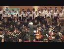 【初音ミクシンフォニー2017】桜ノ雨【東京フィルハーモニー...
