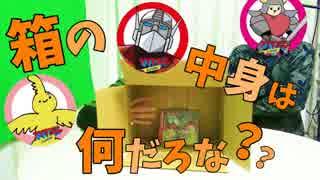 【検証】箱の中身が自分自身のCDでも気付