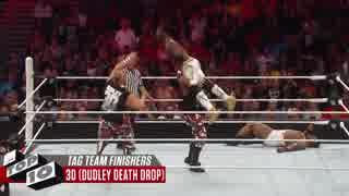 <WWE>最高なタッグチームフィニッシャー